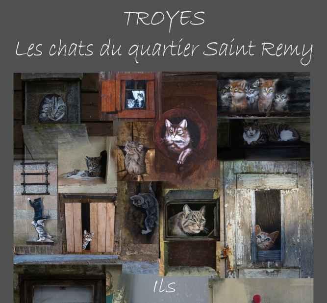 """""""Les chats de Troyes"""""""