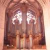 Les Grandes Orgues de la Cathédrale