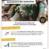 Journées nationales de l'Archéologie - Soirée spéciale Lavau